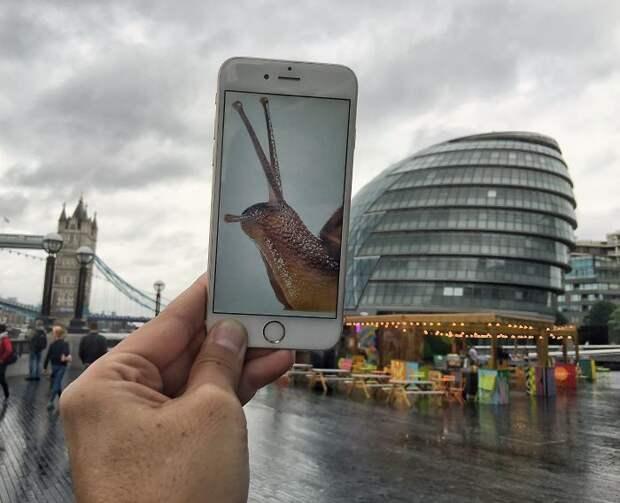 Новый взгляд на мир с помощью телефона (30 фото)