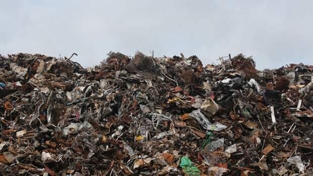 Строительство 25 новых мусоросжигательных заводов в России предложено отложить