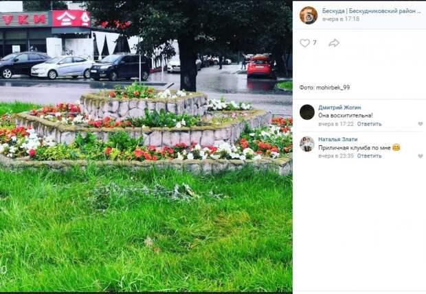 Фото дня: три яруса цветов у «Верхних Лихоборов»