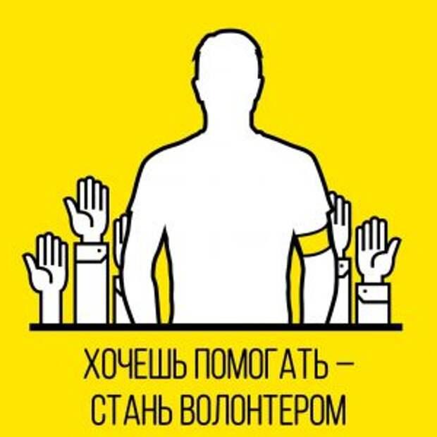 Социальные волонтеры Москвы помогают горожанам на самоизоляции выгуливать домашних питомцев и ходить за покупками