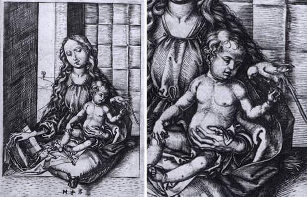 Мартин Шонгауэр «Мадонна с Младенцем и попугаем» (1470-75)