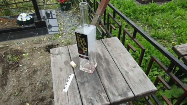 Высшая форма наслаждения: бутылка водка на кладбище