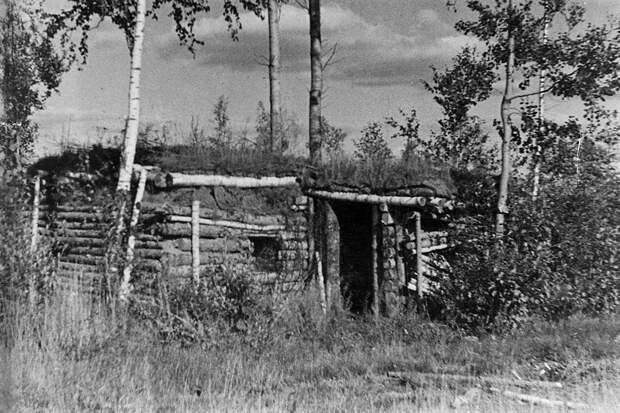 Немецкий ДЗОТ у деревни Чернушки, амбразуру которого закрыл своим телом Александр Матросов