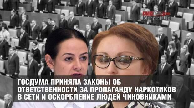 Госдума приняла законы об ответственности за пропаганду наркотиков в сети и оскорбление людей чиновниками