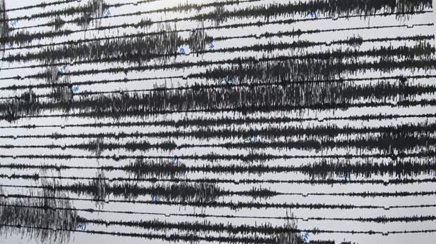 Сейсмологи зафиксировали землетрясение магнитудой 5,1 на Камчатке