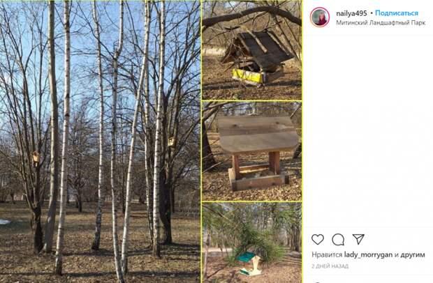 Фото дня: домики для птиц развесили в парке Митина