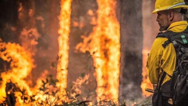 Лесные пожары в Турции спровоцировали эвакуацию туристов