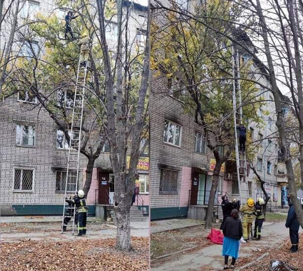 Спасателей Никополя озадачила беременная женщина на высоком дереве