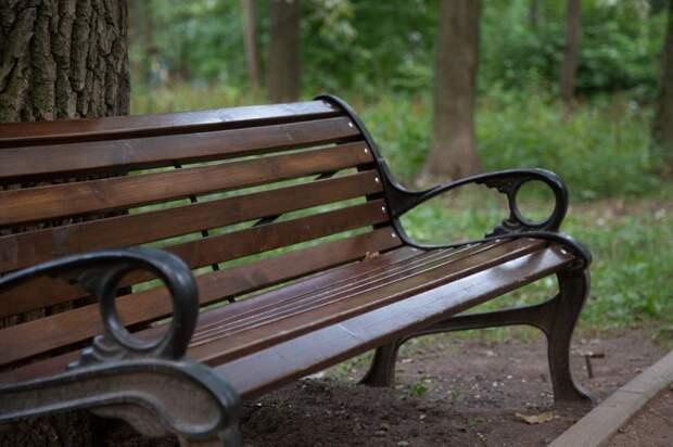 В парке имени Федорова установили лавочку