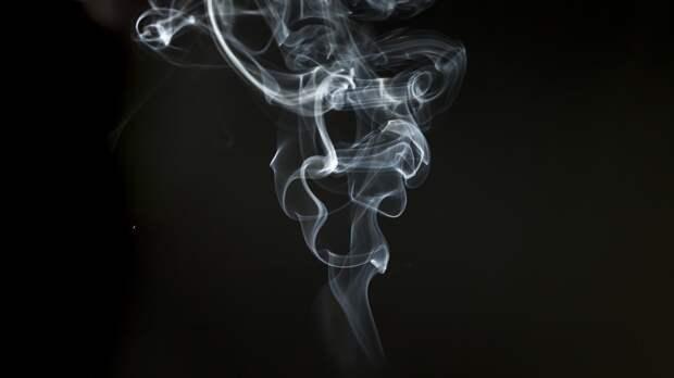 Содержащиеся в сигаретном дыме вещества способны блокировать проникновение COVID-19