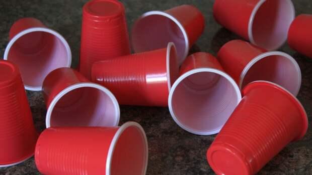Глава РЭО призвал граждан отмечать День России без одноразовой пластиковой посуды