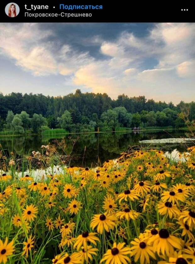 Фото дня: краски уходящего лета в парке «Покровское-Стрешнево»