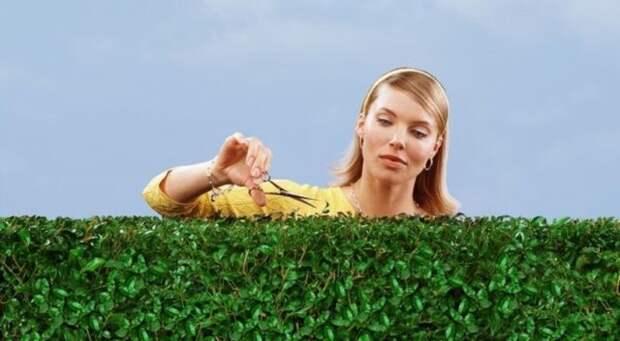 девушка стрижет кустарник
