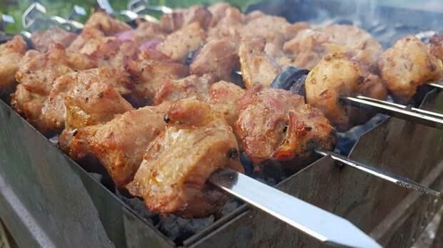 Роспотребнадзор предупредил о скрытой опасности несвежего шашлычного мяса