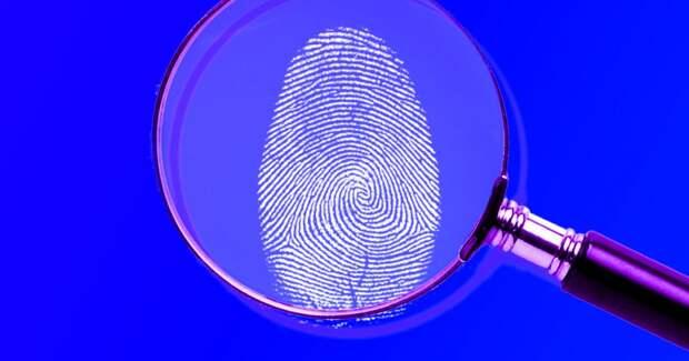 3 дикие истории, как преступники пытались скрыть отпечатки пальцев