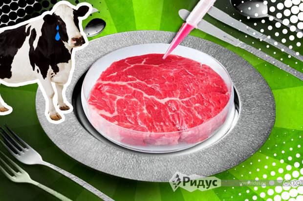 Переход на искусственное мясо – хайп, или неизбежное будущее?