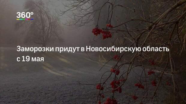 Заморозки придут в Новосибирскую область с 19 мая
