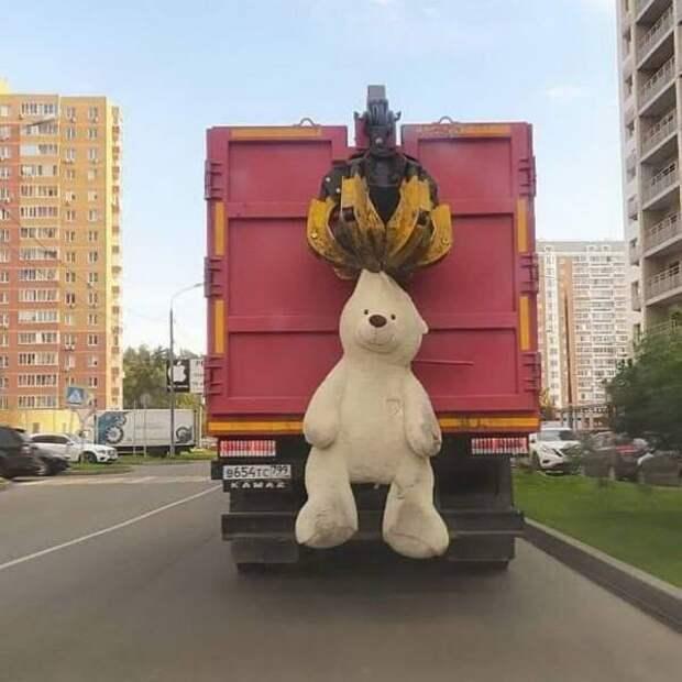 Вывоз огромного медведя на мусоровозе
