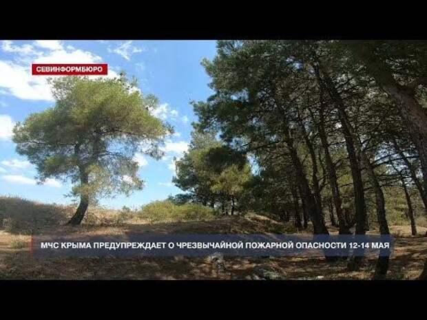 МЧС Крыма предупреждает о чрезвычайной пожарной опасности 12-14 мая