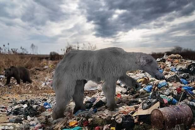 5 сюрпризов эволюции, которые ждут планету в будущем