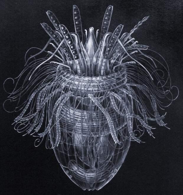 Лорицеферы - морские беспозвоночные, которые получают энергию для жизни из водорода