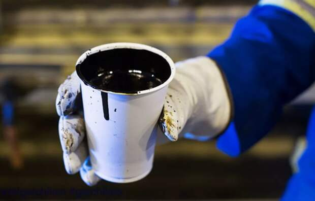 Любое расширение НДД на новые категории нефти будет не раньше 2024 года - Шульгинов