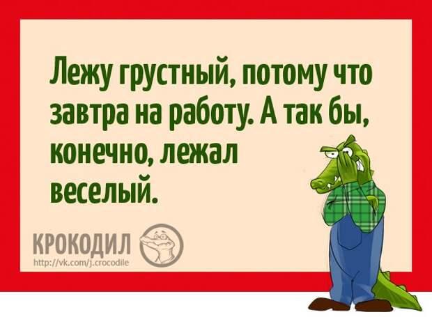 https://pp.vk.me/c635101/v635101596/d27f/m8IN1qMLoBA.jpg