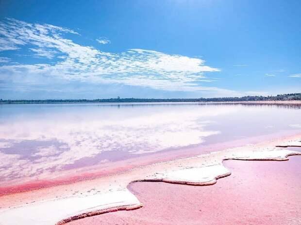 Очаровательное розовое озеро в Австралии, привлекающее туристов