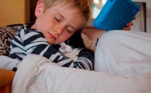 Семья взяла из приюта 20-летнего кота! Они даже не подозревали, что в нем еще столько любви!