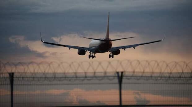 Cтюардессы украинского лоукостера SkyUp начнут работать в кроссовках