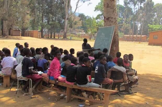 А вот некоторые африканские школы. Всё ещё есть на чём сидеть, но ни стен, ни крыши уже нет прикол, школа, юмор
