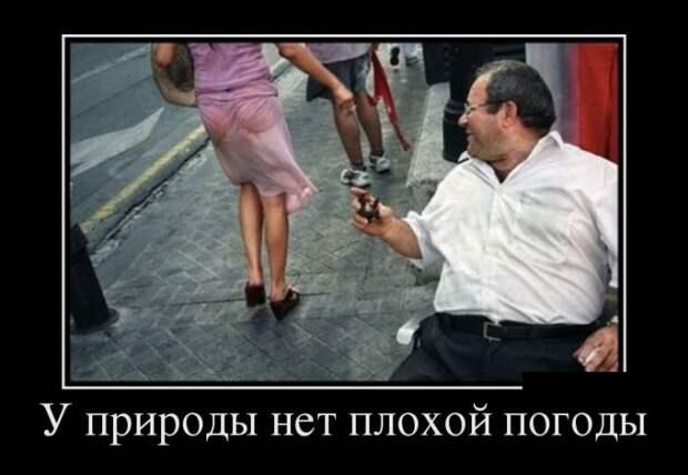 Позитивные и смешные демотиваторы для хорошего настроения (11 фото)