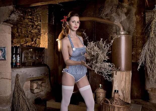 Сексуальлные швейцарские фермерши, календрь, фото 2