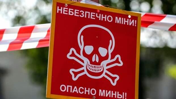 ВСУ спешно занялись минными полями для прохода диверсантов