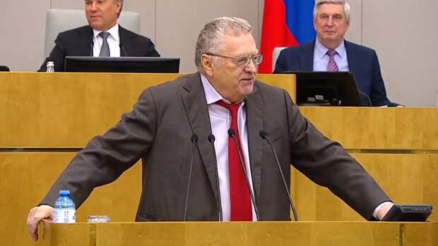Жириновский предложил полюбить не себя, а Россию в себе