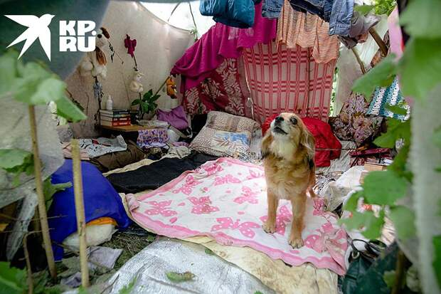 Дом беженок внутри Фото: Андрей АБРАМОВ