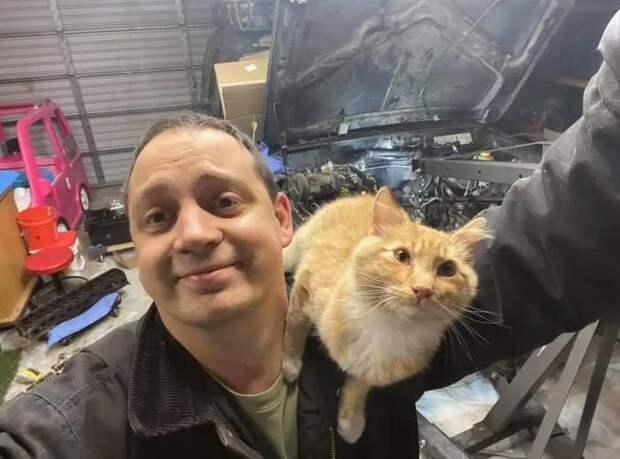 История кошки Салли, которая превратилась в Салли 2.0.