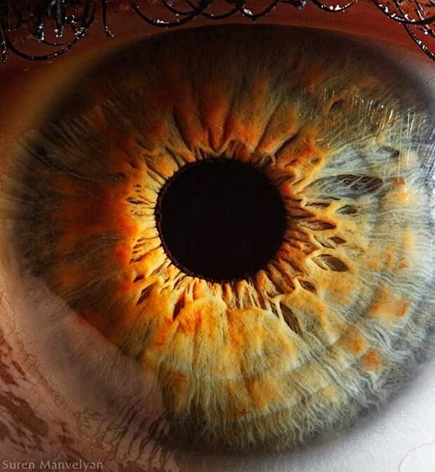 eye-macro-photo-11