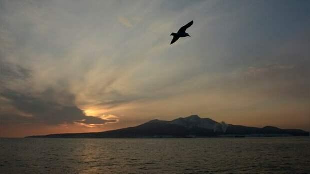 Россия предупредила Японию о том, что бартера на Курильские острова никогда не будет