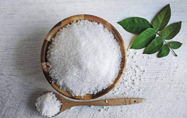 Согласно народным приметам, соль и посуду лучше никому не давать в долг