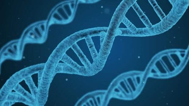 Американские ученые разработали новую методику создания ДНК-нанороботов