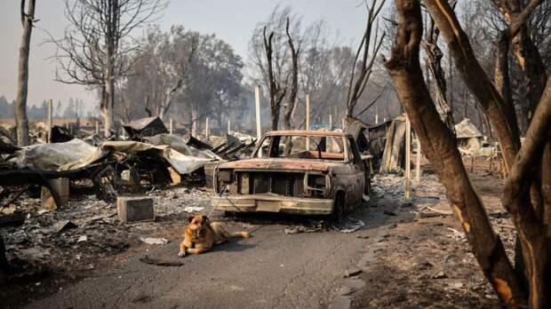 Пожары на Западе США охватили около 2 миллионов гектаров