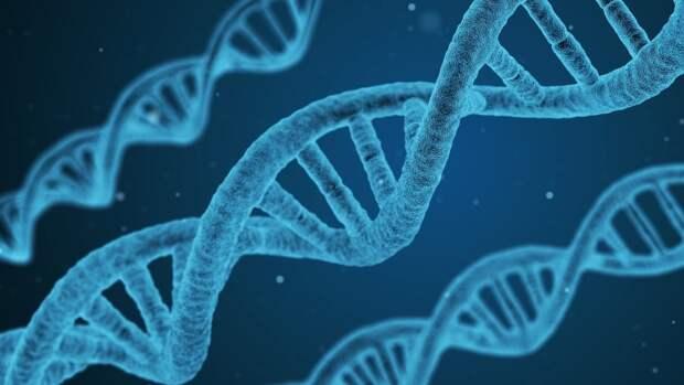 Коронавирус оказался способен встраиваться в ДНК зараженных людей