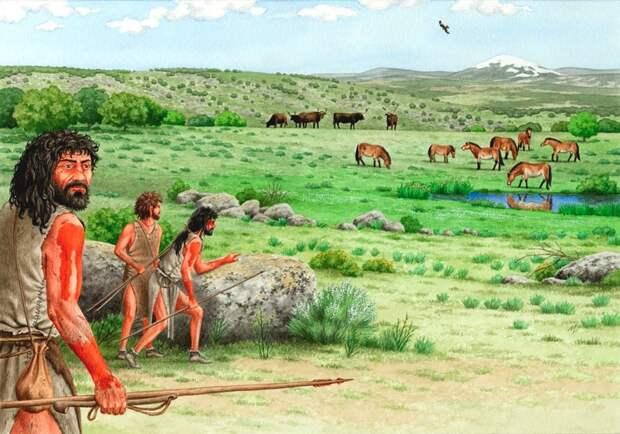 coahuntinghorses