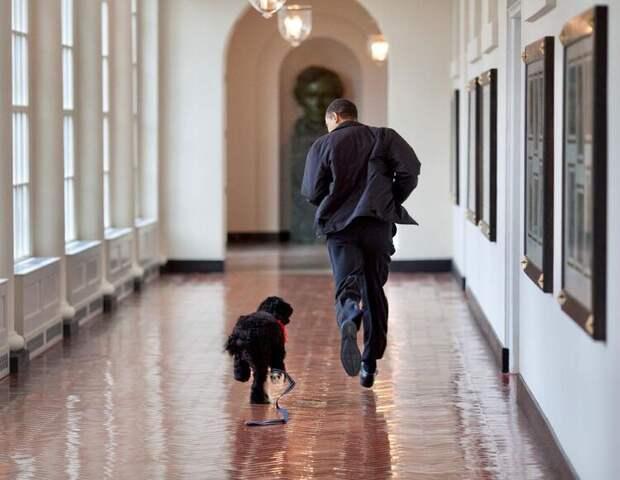 Барак и Мишель Обама рассказали о потере члена своей семьи
