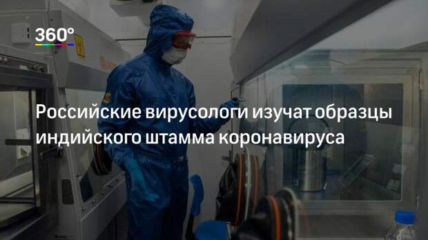 Российские вирусологи изучат образцы индийского штамма коронавируса