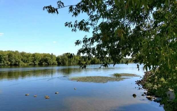 Сухогруз, севший на мель, заблокировал движение по Волго-Каспийскому каналу