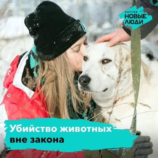 «Новые люди» против убийства собачек