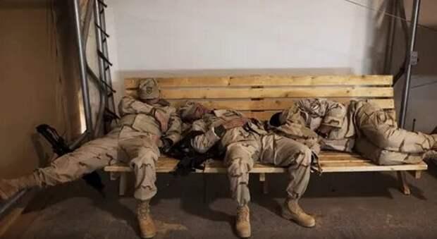 Вот как проспимся так всех заборем...
