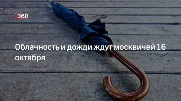 Гидрометцентр России: в субботу 16 октября в Москве ожидается облачная и дождливая погода